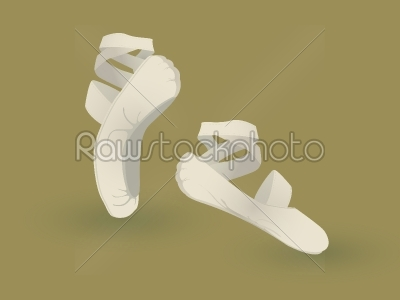 stock vector: ballet shoes-Raw Stock Photo ID: 24097