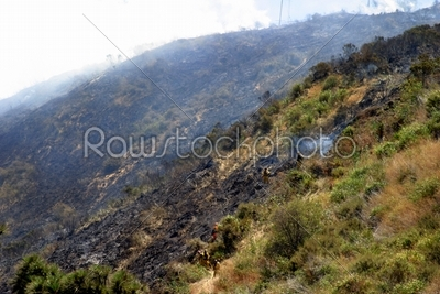 stock photo: barnett fire-Raw Stock Photo ID: 30069