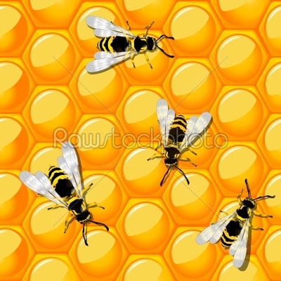 stock vector: bees and honeycomb-Raw Stock Photo ID: 24110