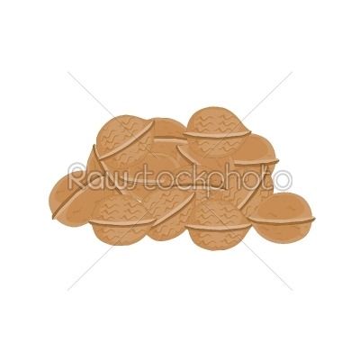 stock vector: chestnut-Raw Stock Photo ID: 27693