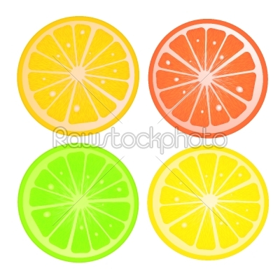 stock vector: citric slices-Raw Stock Photo ID: 26284