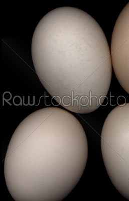 stock photo: eggs -Raw Stock Photo ID: 30489