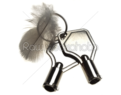 stock photo: feather an  two  key  on  a white background -Raw Stock Photo ID: 9867