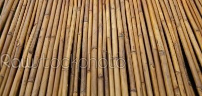 stock photo: fencing bamboo panel-Raw Stock Photo ID: 32029
