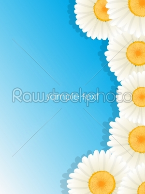 stock vector: greeting floral card-Raw Stock Photo ID: 24518