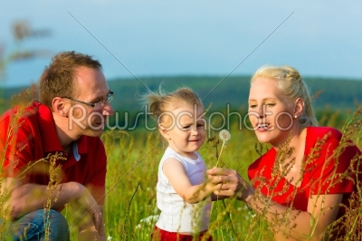 stock photo: kid in the meadow blowing dandelion seed-Raw Stock Photo ID: 45265