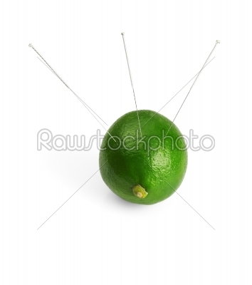 stock photo: lime and needle-Raw Stock Photo ID: 30349