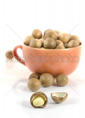 stock photo: macadamia nuts -Raw Stock Photo ID: 22944
