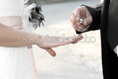 stock photo: married couple holding hands with rings-Raw Stock Photo ID: 28409