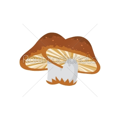 stock vector: mushroom-Raw Stock Photo ID: 27733