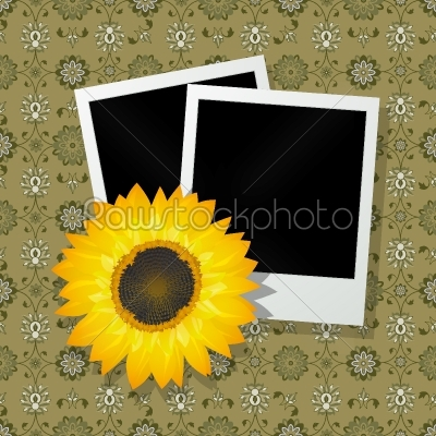 stock vector: photo frames with sunflower-Raw Stock Photo ID: 24937