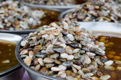 stock photo: pickled shell-Raw Stock Photo ID: 21615