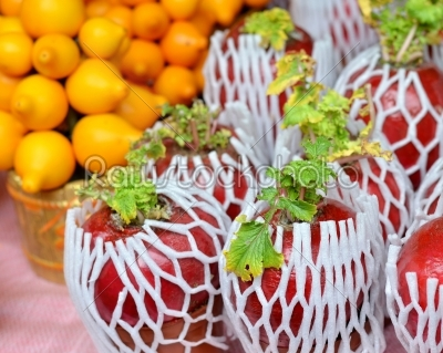 stock photo: plant for chinese new year-Raw Stock Photo ID: 19247