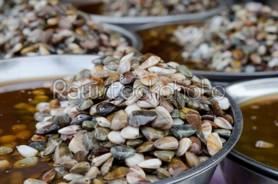 stock photo: preserved razor clam-Raw Stock Photo ID: 21614