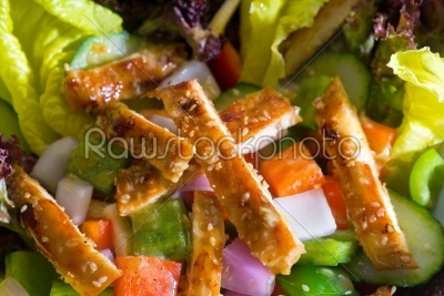 stock photo: sesame chicken salad-Raw Stock Photo ID: 37669