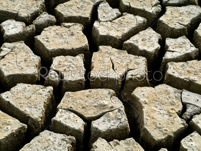 stock photo: soil mud dry extract-Raw Stock Photo ID: 23535