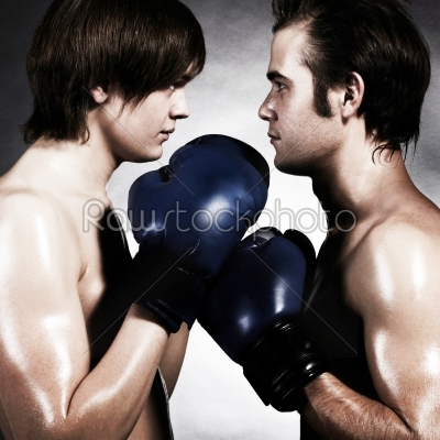 stock photo: two boxers-Raw Stock Photo ID: 18195