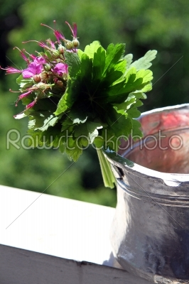 stock photo: water jug decorated with geraniums-Raw Stock Photo ID: 28378