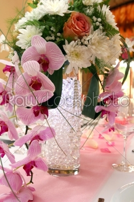 stock photo: wedding decorations with orchids-Raw Stock Photo ID: 28420