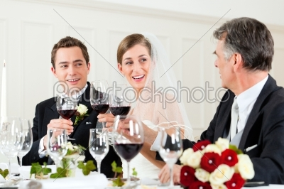 stock photo: wedding party at dinner-Raw Stock Photo ID: 41645