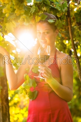 stock photo: woman with glass of wine in vineyard-Raw Stock Photo ID: 46233