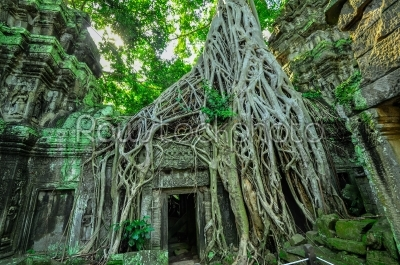 stock photo: ancient buddhist khmer temple in angkor wat complex siem reap-Raw Stock Photo ID: 56837