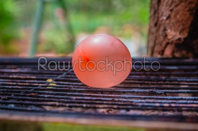 stock photo: balloon filled with water placed on a hot grill-Raw Stock Photo ID: 75165