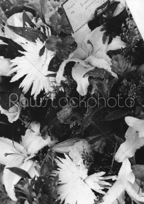 stock photo: black and white flowers texture-Raw Stock Photo ID: 74946