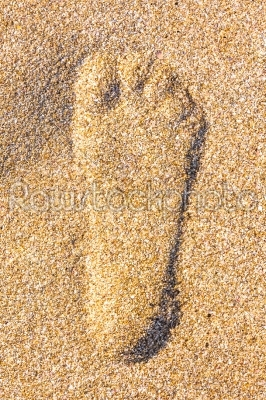 stock photo: close up of footstep in sandy on the beach-Raw Stock Photo ID: 57541