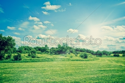 stock photo: countryside field landscape with grass and bushes-Raw Stock Photo ID: 65849