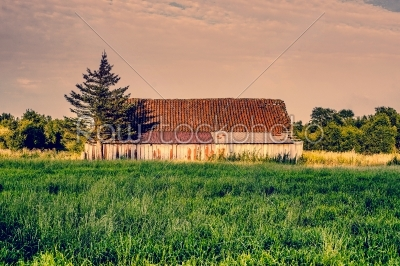 stock photo: countryside scenery with an old barn-Raw Stock Photo ID: 66040