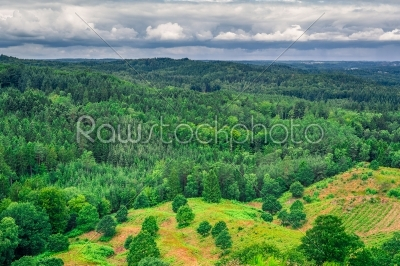 stock photo: danish landscape with green trees-Raw Stock Photo ID: 69834