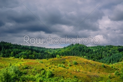 stock photo: dark clouds hanging over green nature-Raw Stock Photo ID: 69839