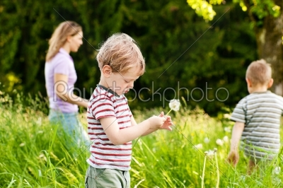 stock photo: family summer  blowing dandelion seeds-Raw Stock Photo ID: 52002