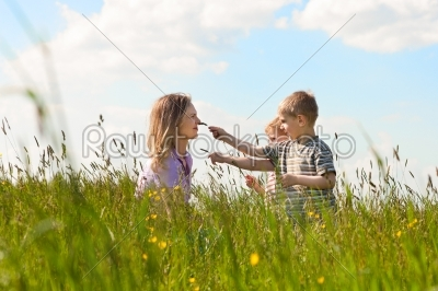 stock photo: family summer  playing on the meadow-Raw Stock Photo ID: 51992