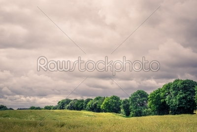 stock photo: field landscape with cloudy weater-Raw Stock Photo ID: 69823