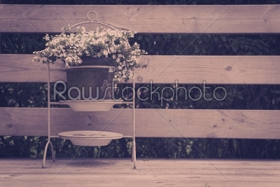 stock photo: flower pot on a terrasee-Raw Stock Photo ID: 69780