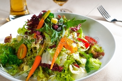 stock photo: fresh mixed salad-Raw Stock Photo ID: 54447