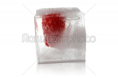stock photo: fruit in ice cube-Raw Stock Photo ID: 60393