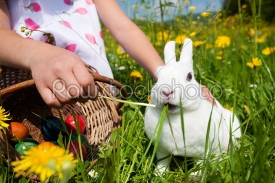 stock photo: girl feeding bunny-Raw Stock Photo ID: 51249
