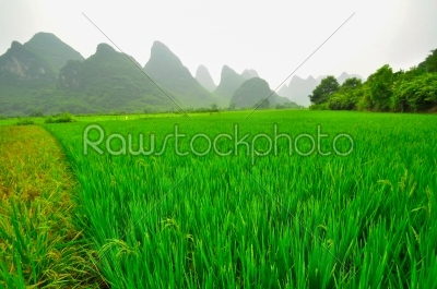 stock photo: guilin li river karst mountain landscape in yangshuo-Raw Stock Photo ID: 57084
