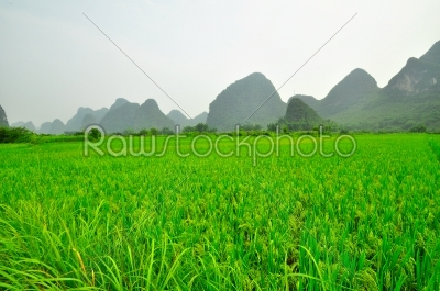 stock photo: guilin li river karst mountain landscape in yangshuo-Raw Stock Photo ID: 57085