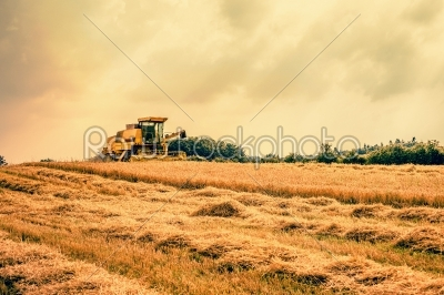stock photo: harvester on a dry field-Raw Stock Photo ID: 66022