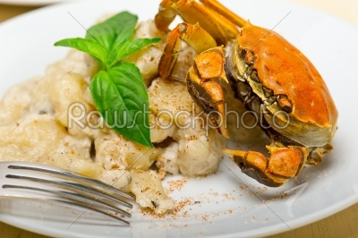 stock photo: italian gnocchi with seafood sauce with crab and basil-Raw Stock Photo ID: 63797