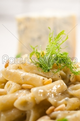 stock photo: italian pasta penne gorgonzola and pine nuts-Raw Stock Photo ID: 57754