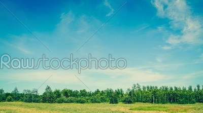 stock photo: landscape with green trees and blue sky in the summertime-Raw Stock Photo ID: 69797