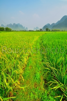 stock photo: li river vertical landscape in yangshuo guilin-Raw Stock Photo ID: 57159