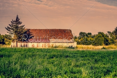 stock photo: old abandoned barn-Raw Stock Photo ID: 66039