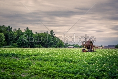 stock photo: old water pump on a potato field-Raw Stock Photo ID: 69814