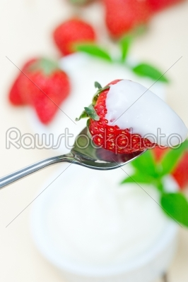 stock photo: organic greek yogurt and strawberry-Raw Stock Photo ID: 63753